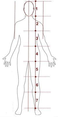 bioplastia corporal rio de janeiro barra da tijuca